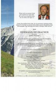 VParte Hermann Heubacher
